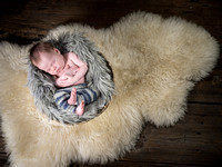 William's Newborn Session