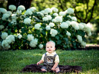 Jackson's 9 Month Family Session